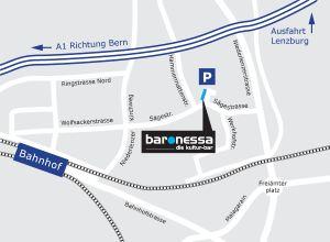 baronessalenzburglageplan.jpg